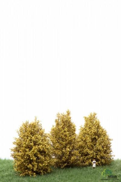 Große Büsche (10-12cm) hellgelb