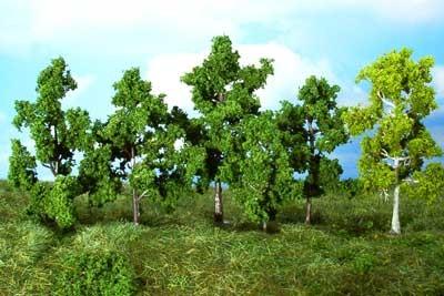 14 Laubbäume sortiert 5-12 cm