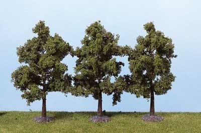 3 Obstbäume 12 cm