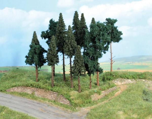 Nadelwald, 14 Nadelbäume 10-17cm