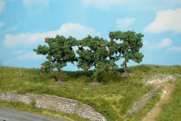 3 Apfelbäume 8cm