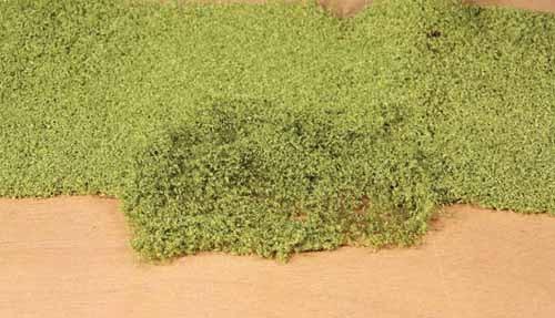 Blätterflor hellgrün 28x14cm