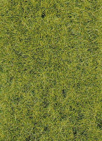 Grasfaser Frühling 10mm, 50 g