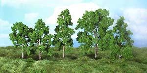 10 Obstbäume 8-12 cm