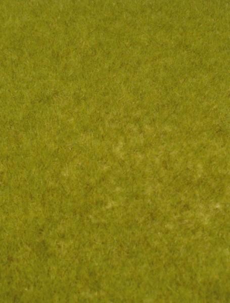 kreativ-Wildgras,wiesengrün 45x17