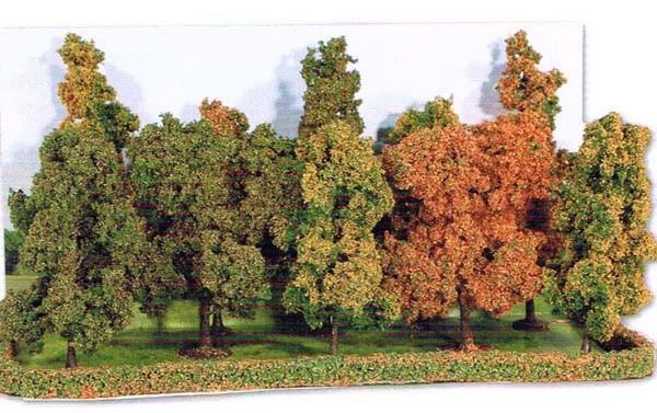 Herbstwald, 10 Baeume 10-14cm