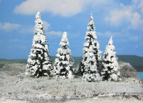 5 Schneetannen 7-14 cm