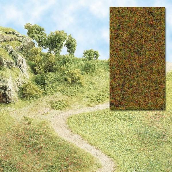 Grasfasern Herbst / Wald
